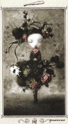 Page of Wands - Nicoletta Ceccoli Tarot by Nicoletta Ceccoli