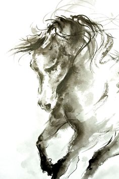 Horse sketch (I think you could do this with the right materials, charcoal maybe) Art And Illustration, Horse Sketch, Equine Art, Horse Art, Watercolor Art, Horse Watercolour, Painting & Drawing, Amazing Art, Cool Art