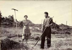DigitaltMuseum - Nikoline Henningea, f. Strøm (1911-1980), og Kåre Glad (1910-1998) på slåttemarka i Djupfjorden, Sortland.
