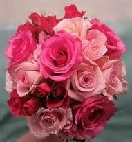 Flowers - Pink, Pink and Pink Full Size and Spray Roses - Hand Tied Bouquet