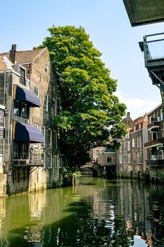 Dordrecht, one of the oldest and most beautiful cities in Holland. This stunning city known as the Venice of Holland is full of beautiful canals! Vietnam Travel, Thailand Travel, Japan Travel, Italy Travel, Holland Cities, Visit Holland, China Travel, France Travel, Travel Europe
