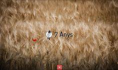 7 Anys d'Estudi FGH.net