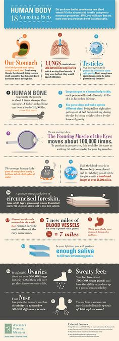 nocturnalnurse:    18 Amazing Facts of the Human Body (To see the image clearly, click here)