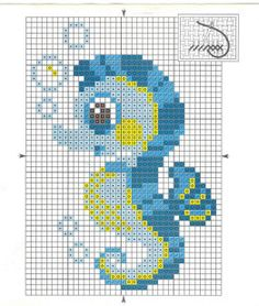 seahorse 1 of 2