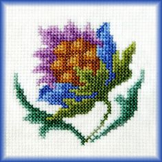 http://api.ning.com/files/e5iyWrav4T*HljA42fwOIpMPCqOL04D2yqx7BvHhpIc9x2eIdtLBlUNa0Tv2sehWiIFtDAdUQXKRpnKtfwG1*A__/flower1.jpg