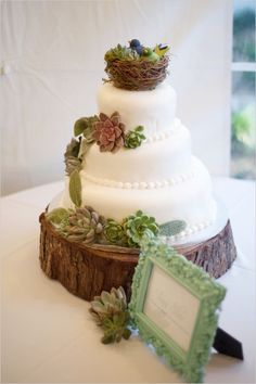 gorgeous wedding cake, adorned with succulents and a wee bird's nest, and resting on a tree stump