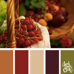 25 Color Palettes Inspired by the Pantone Fall 2017 Color Trends Fall Color Palette, Colour Pallette, Colour Schemes, Color Trends, Color Combinations, Color Swatches, Color Theory, Pantone Color, E Design