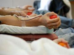 #Realizarán colecta de sangre para contar en stock debido al Encuentro de Mujeres - Diario NORTE: Diario NORTE Realizarán colecta de sangre…