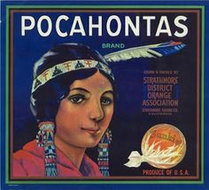 Sunkist labels featuring Native Americans -fruit crate label art: native americans