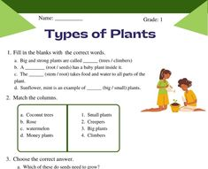 Worksheets For Class 1, Addition Worksheets, Science Worksheets, Printable Worksheets, Learning Process, Kids Learning, Teaching Tools, Teaching Resources, Nutrition In Plants