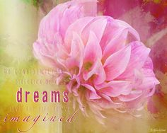 The Direction of your Dreams - Image Art by Jordan Blackstone. Fine art prints for sale. #imageart #inspirationalwords #floralphotography