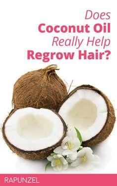 Egrow Coconut Tree Seeds Perennial Bonsai Juicy Fruit Plants for Home and Garden Planting Coconut Oil For Acne, Coconut Oil Uses, Coconut Water, Coconut Balls, Bonsai, Coconut Milk Recipes, Natural Lip Balm, Natural Beauty, Gardens