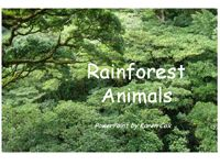 Emergent reader printable book of rainforest animals