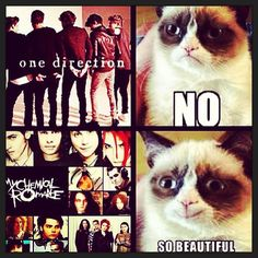 Grumpy Cat / My Chemical Romance...so pinning this for my daughter!