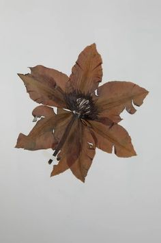 | FLOWER PRESS WALNUT Leaf Tattoos, Woodworking, Leaves, Flowers, Home Decor, Decoration Home, Room Decor, Florals, Joinery