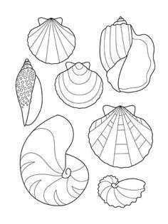 Coloriages les petits poissons coloriage site - Dessin de coquillage ...