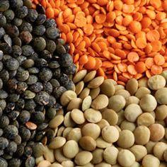 BabyZone: BabyZone: 10 Folic Acid Foods for Pregnancy