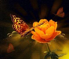 flower-805097_960_720 (99 pieces)