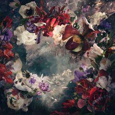 Celestre by Ysabel LeMay http://ysabellemay.com/artwork/?artwork=1562 #WonderfulOtherWorlds