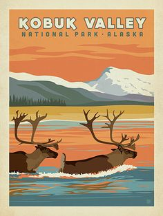 Kobuk Valley National Park - Anderson Design Group has created an award-winning series of classic travel posters that celebrates the history and charm of America's greatest cities and national parks. Founder Joel Anderson directs a team of talented Nashville-based artists to keep the collection growing. This print celebrates the majestic beauty of migrating caribou in Kobuk Valley National Park.