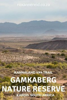 4x4 trail at Gamkaberg Nature Reserve near Oudtshoorn #SouthAfrica #Karoo #travel  South Africa Travel  Access Our Site Much More Information  http://storelatina.com/travelling  #viajeafrica #africatravel  South Africa Acesse Nosso Site Muito Mais Informações http://storelatina.com/southafrica/travelling