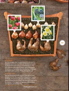 house flower garden 678495500099693796 - Fall flowers outdoor garden ideas 9 Inspira Spaces Source by lillianedwardsen