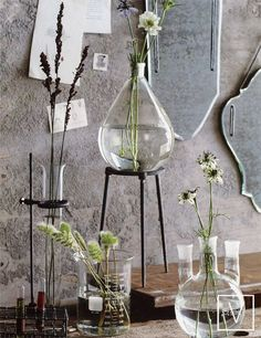 Pasteur Vases and Frameless Mirrors (shown in background) - from Velocity Art and Design (webshop)