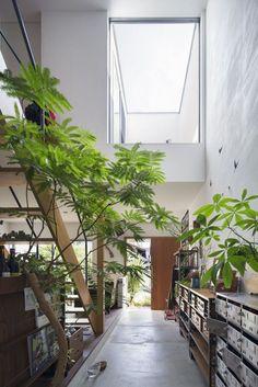5年経っても進化中。年数と共に変化していく家。 – D'S STYLE(ディーズスタイル) Green Facade, Modern Bungalow House, House Plants Decor, Home Room Design, Facade Architecture, Japanese House, Facade House, Tropical Houses, House Rooms