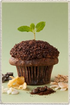 Compost Cupcake by Cupcake Royale (with Coconut, Coffee, Oats, Chocolate Chips, Vanilla Cake Crumble, Potato Chips)