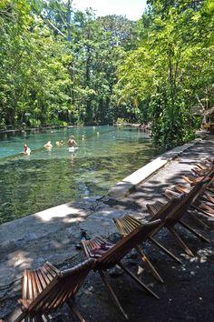 Swim in stunning spring water at Ojo de Agua on Isla de Ometepe in Nicaragua | heneedsfood.com