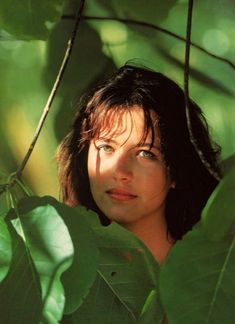 Sophie Marceau James Bond, Sophie Marceau Photos, Yummy Hair, Emily Osment, Le Jolie, French Beauty, Alyson Hannigan, French Actress, Iconic Movies