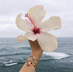 #flower #hawaiian #hawaiianflower #hawaii #ocean #beach #summer #goals #vsco