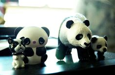 I'm sorry to tell you this, but one of you is just NOT a panda....tsk tsk tsk.     Pandas are rare and cherished in China.