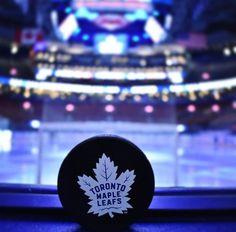 Nhl Hockey Teams, Sports Teams, Hockey Players, Ice Hockey, Hockey Live, Hockey Rules, William Nylander, Mitch Marner, Maple Leafs Hockey