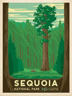 After winning international acclaim for creating the Spirit of Nashville Collection, designer and illustrator Joel Anderson set out to create a series of classic travel posters that celebrates the history and charm of America's greatest cities and national parks. This print celebrates Sequoia National Park, and General Sherman, the World's biggest tree.
