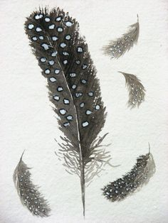 Watercolour guinea fowl feather original painting study spotty feather. £30.00, via Etsy.