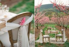 A Beautiful Blossom-Filled Spring Wedding Inspiration Shoot In An Orchard From Jen Fariello Photography