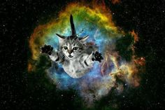 cat bursting from galaxy background