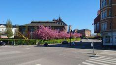 Forår i Aarhus
