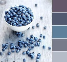 Blueberry Colors