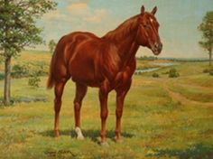 Wimpy P-1 First horse registered as American Quarter Horse, came from the King Ranch in Texas. The year, 1942.