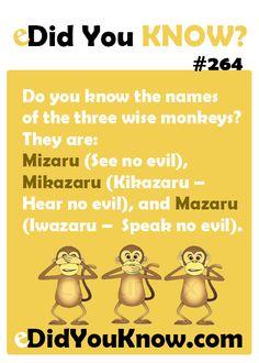 Do you know the names of the three wise monkeys? They are: Mizaru (See no evil), Mikazaru (Kikazaru – Hear no evil), and Mazaru (Iwazaru – Speak no evil).
