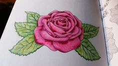 Rose colored with Prismacolor pencils and Colorit gel pens.