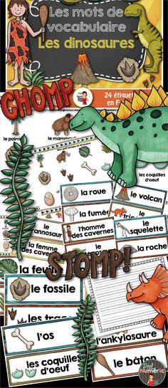 24 mots-étiquettes LES DINOSAURES pr centres de #littératie #lecture #french…