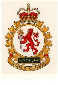 Canadian Army, Afghanistan War, Military Police, Fire Dept, Armed Forces, Badges, Flags, Moose, Patches