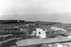 EL DURAZNO, LAS ARENAS, LA VERA Y LAS DEHESAS EN EL TIEMPO Puerto de la Cruz Tenerife