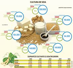 Soy culture Infographics, Culture, Shopping, Information Graphics, Infographic, Infographic Illustrations, Info Graphics