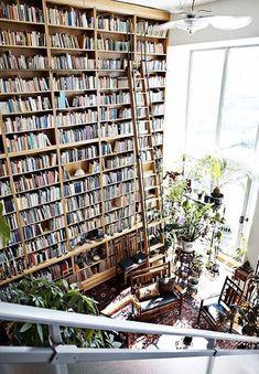 bibliothèque géante