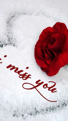 I miss you Miss U My Love, Missing You Love, Miss You Too, I Love My Hubby, Dont Love Me, Romantic Love Images, Romantic Flowers, Love Flowers, I Love You Images