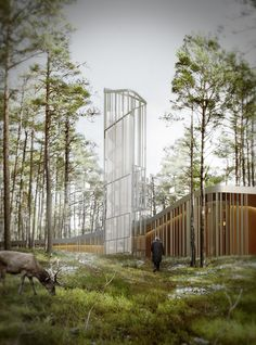 ARVO PÄRT CENTRE Nieto Sobejano Arquitectos... what is this place and the reindeer Just chilling